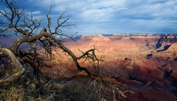 Grand Canyon and Arizona Living